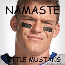 5598c7780c14bd964487d77bbb83462c74efcb8c35092cf74e9cd1f1b654ed56 namaste little mustang thad castle quickmeme,Namaste Meme