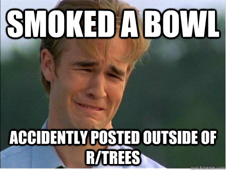 smoked a bowl accidently posted outside of r/trees - smoked a bowl accidently posted outside of r/trees  1990s Problems