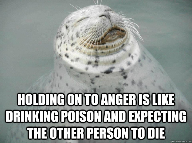 Holding on to anger is like drinking poison and expecting the other person to die - Holding on to anger is like drinking poison and expecting the other person to die  Zen Seal