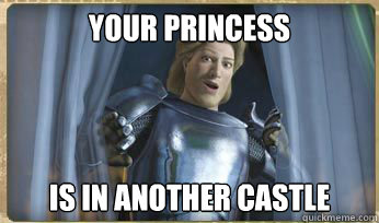 Your Princess Is in another castle