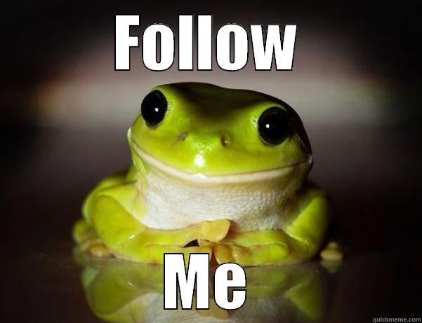 FOLLOW ME Fascinated Frog