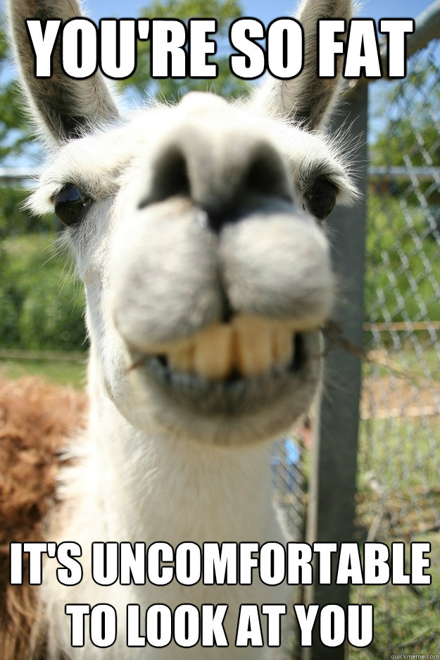 you're so fat it's uncomfortable to look at you - you're so fat it's uncomfortable to look at you  Lame Insult Llama