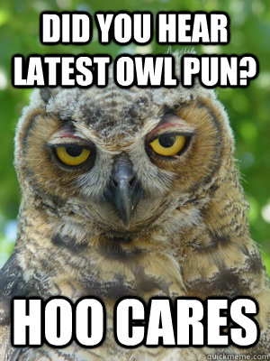 did you hear latest owl pun? hoo cares - did you hear latest owl pun? hoo cares  Stoner Owl