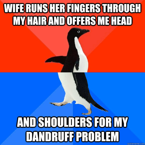 wife runs her fingers through my hair and offers me head and shoulders for my dandruff problem - wife runs her fingers through my hair and offers me head and shoulders for my dandruff problem  Socially Awesome Awkward Penguin