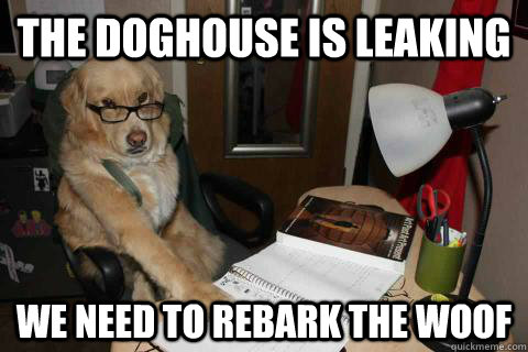 The doghouse is leaking We need to rebark the woof - The doghouse is leaking We need to rebark the woof  Financial Advice Dog