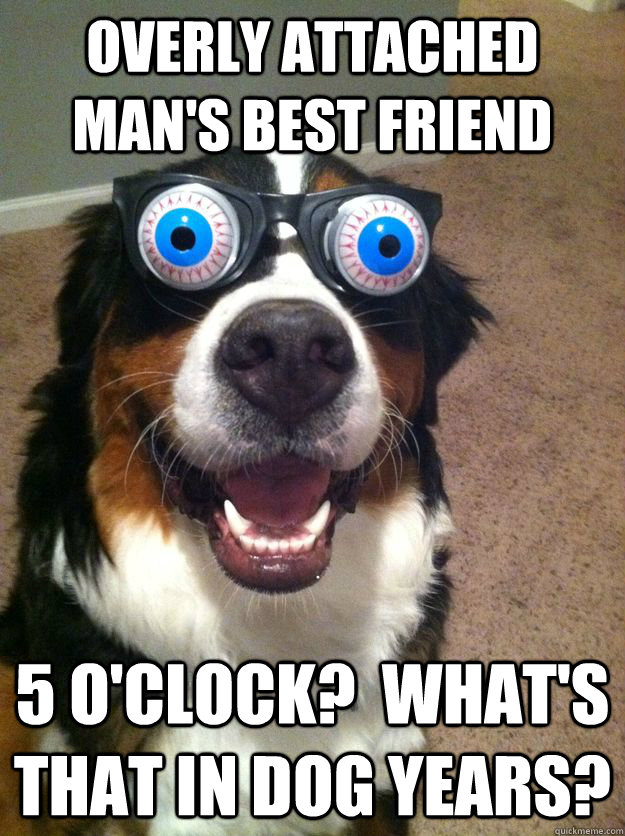 overly attached man's best friend 5 o'clock?  what's that in dog years? - overly attached man's best friend 5 o'clock?  what's that in dog years?  Misc