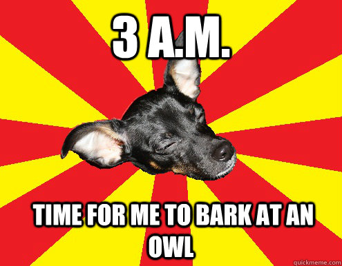 3 A.m.  time for me to bark at an owl
