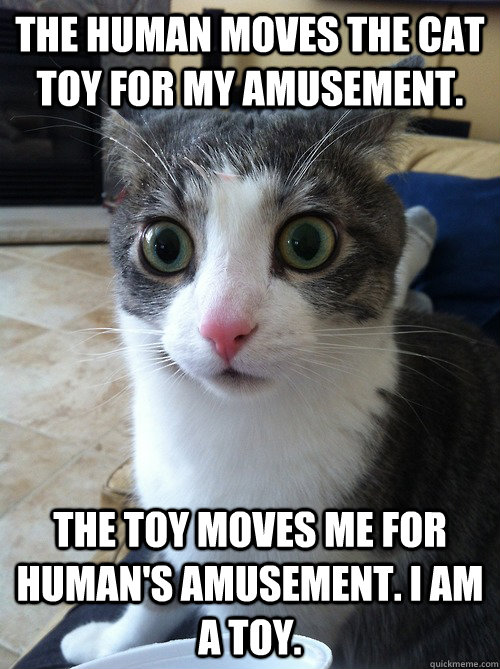 the human moves the cat toy for my amusement.  The toy moves me for human's amusement. I am a toy.