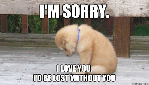 560d613ee0617d304cfffe3d6c56166182c78d171b4885108cea7877b274819c i'm sorry i love you i'd be lost without you sorry puppy,Im Sorry Meme