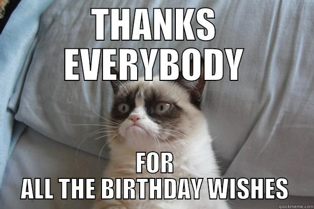 FROM OLE GRUMPY CAT