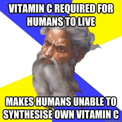Vitamin C required for humans to live Makes humans unable to synthesise own Vitamin C - Vitamin C required for humans to live Makes humans unable to synthesise own Vitamin C  Advice God
