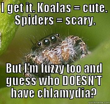 STD's are no joke. - I GET IT. KOALAS = CUTE.  SPIDERS = SCARY. BUT I'M FUZZY TOO AND GUESS WHO DOESN'T HAVE CHLAMYDIA? Misunderstood Spider