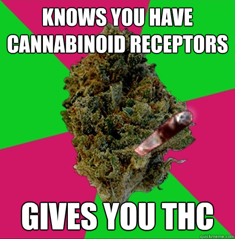 knows you have cannabinoid receptors  gives you THC