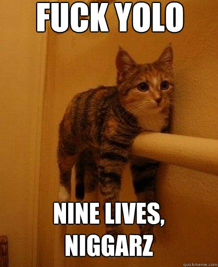 Fuck yolo nine lives, niggarz - Fuck yolo nine lives, niggarz  Monorail Cat
