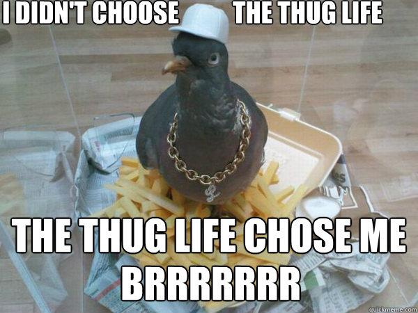 I Didn't Choose           The Thug Life The Thug Life Chose Me BRRRRRRR - I Didn't Choose           The Thug Life The Thug Life Chose Me BRRRRRRR  Socially Awesome Pigeon