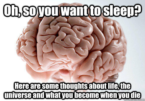 Oh, so you want to sleep? Here are some thoughts about life, the universe and what you become when you die  - Oh, so you want to sleep? Here are some thoughts about life, the universe and what you become when you die   Scumbag Brain