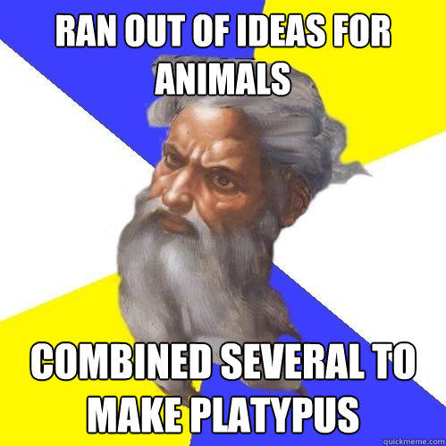 ran out of ideas for animals combined several to make platypus - ran out of ideas for animals combined several to make platypus  Advice God