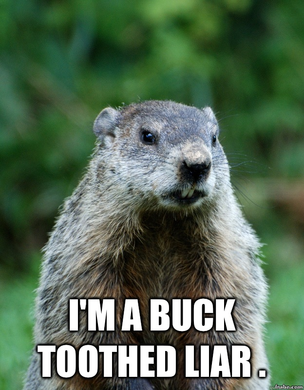 I'm a buck toothed liar .  Groundhog Day