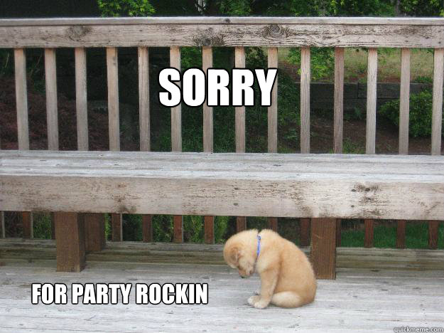 Sorry for party rockin  Sorry