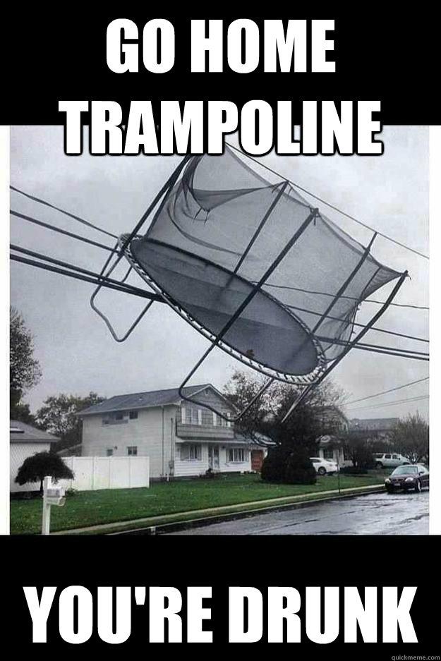 Go home trampoline you're drunk - Go home trampoline you're drunk  Go home tramp