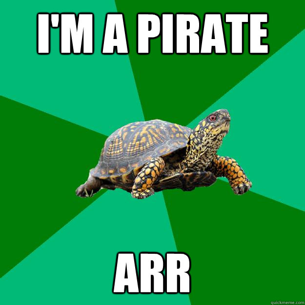 i'm a pirate arr  Torrenting Turtle