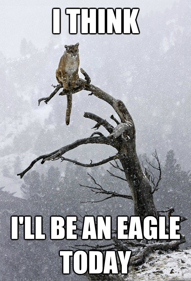I think I'll be an eagle today - I think I'll be an eagle today  Misc