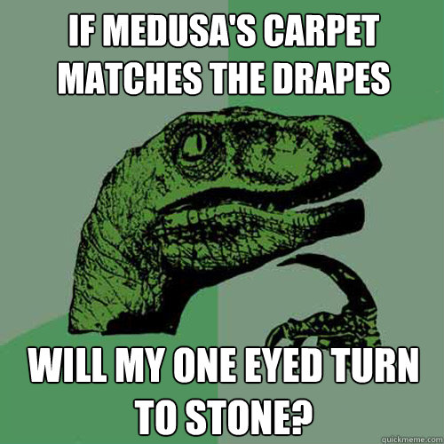If medusa's carpet matches the drapes will my one eyed turn to stone?  Philosoraptor