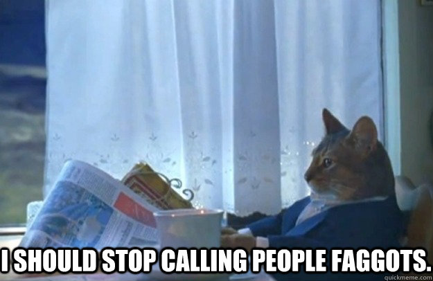 I should stop calling people faggots. -  I should stop calling people faggots.  Sophisticated Cat