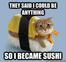 56dabaf0f13ac8027d6dba0cce698af69b1b7251527f869f7f62c67272bfb39e they said i could be anything so i became sushi sushi cat,They Said I Could Be Anything Meme