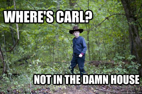56e6def8aa78ceacce780c3b07b2ce7e029c8d4be5489387cc61bedfa9385711 where's carl? not in the damn house carl twd quickmeme