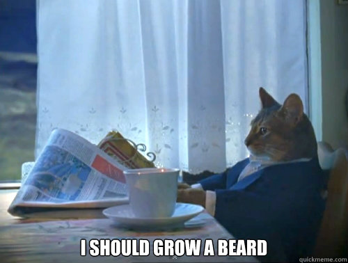 I should grow a beard -  I should grow a beard  120Cat