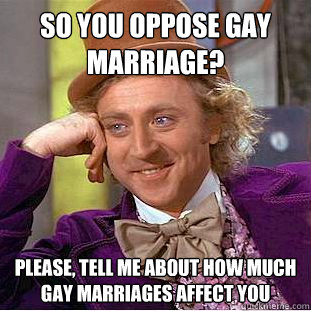 Oppose Gay Marriages 17