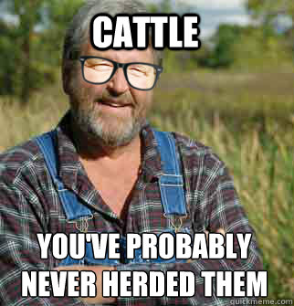 cattle you've probably never herded them before
