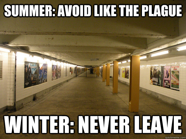 573b8b558af25fdc972f121a56132d7f64c25fcdfe02b1b9ba2d824564660330 summer avoid like the plague winter never leave nyc subway,Memes Nyc