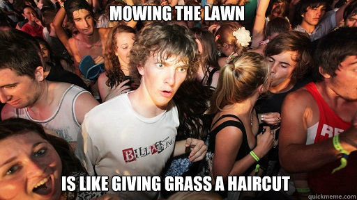 Mowing the lawn  is like giving grass a haircut - Mowing the lawn  is like giving grass a haircut  Sudden Clarity Clarence