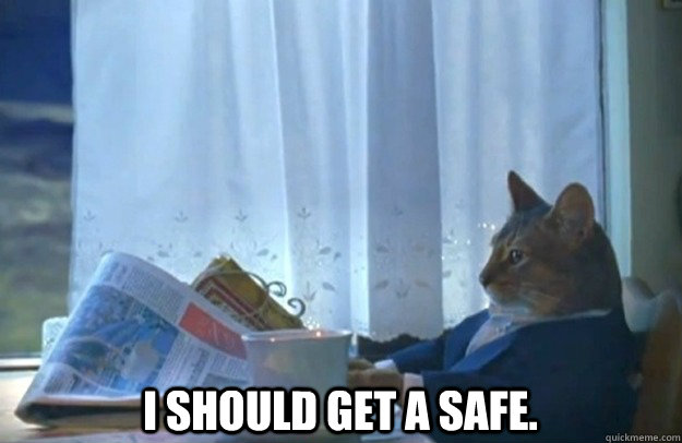 I should get a safe. -  I should get a safe.  Sophisticated Cat