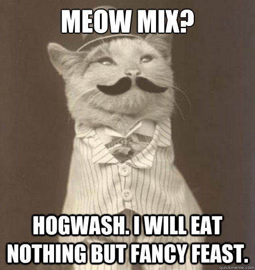 meow mix? hogwash. I will eat nothing but fancy feast.