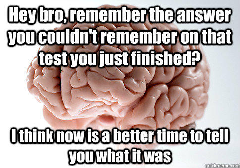 Hey bro, remember the answer you couldn't remember on that test you just finished? I think now is a better time to tell you what it was - Hey bro, remember the answer you couldn't remember on that test you just finished? I think now is a better time to tell you what it was  Scumbag Brain
