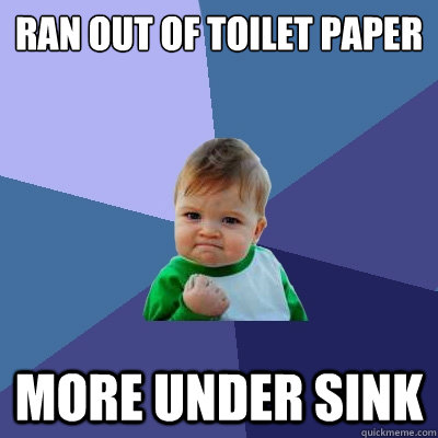 Ran out of toilet paper More under sink - Ran out of toilet paper More under sink  Success Kid