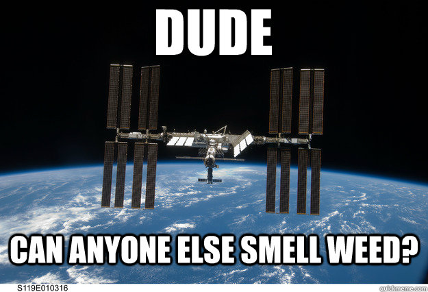 Dude can anyone else smell weed? - Dude can anyone else smell weed?  Misc