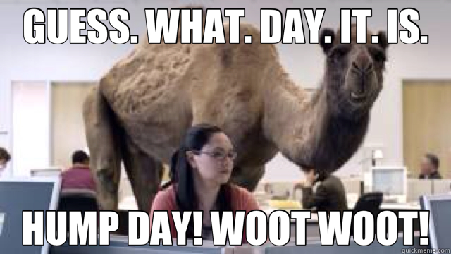 GUESS. WHAT. DAY. IT. IS. HUMP DAY! WOOT WOOT!