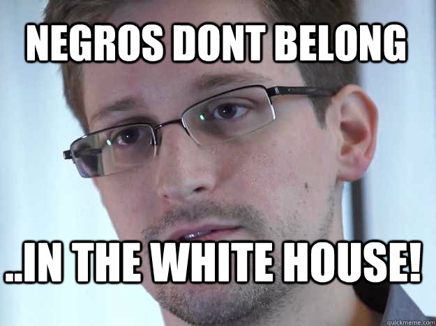 NEGROS DONT BELONG ..IN THE WHITE HOUSE!