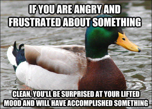 If you are angry and frustrated about something Clean, you'll be surprised at your lifted mood and will have accomplished something  - If you are angry and frustrated about something Clean, you'll be surprised at your lifted mood and will have accomplished something   Actual Advice Mallard