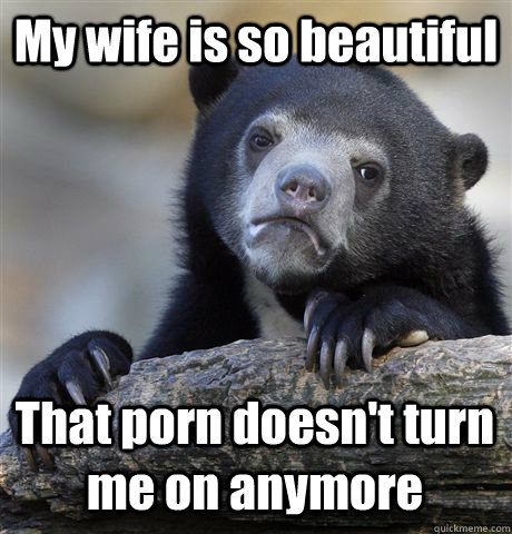 My wife is so beautiful That porn doesn't turn me on anymore - My wife is so beautiful That porn doesn't turn me on anymore  Confession Bear
