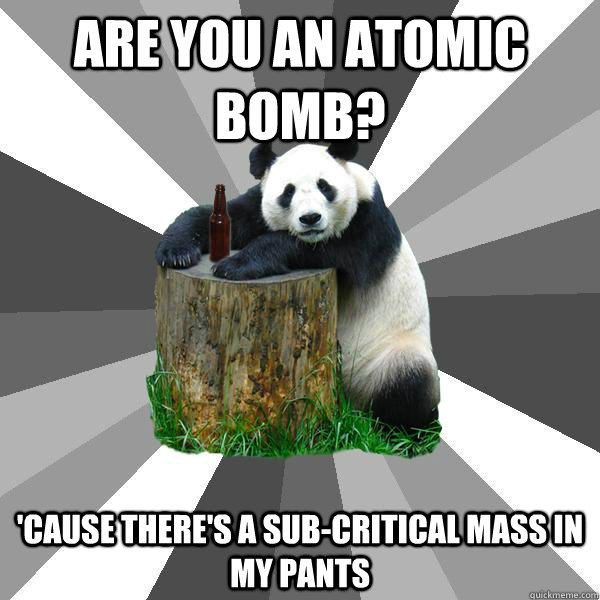 ARE YOU AN ATOMIC BOMB? 'CAUSE THERE'S A SUB-CRITICAL MASS IN MY PANTS - ARE YOU AN ATOMIC BOMB? 'CAUSE THERE'S A SUB-CRITICAL MASS IN MY PANTS  Pickup-Line Panda