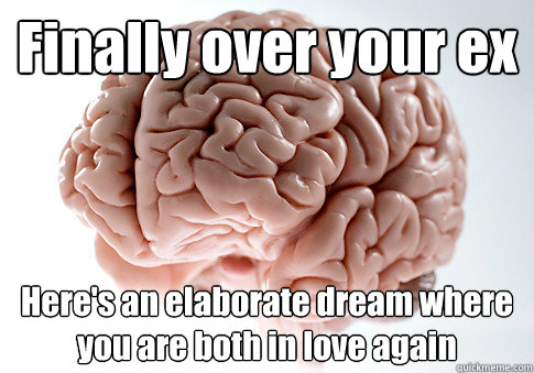 Finally over your ex Here's an elaborate dream where you are both in love again - Finally over your ex Here's an elaborate dream where you are both in love again  Scumbag Brain