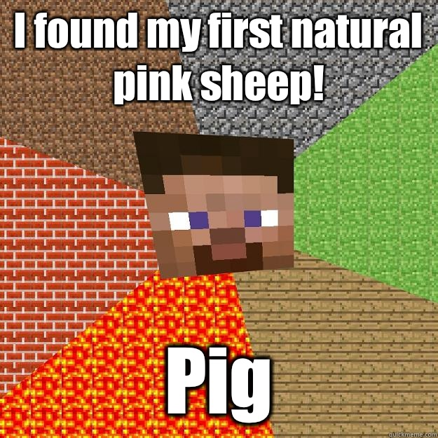 I Found My First Natural Pink Sheep Pig Minecraft Quickmeme