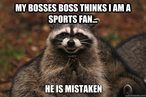 My bosses boss thinks I am a sports fan... He is mistaken - My bosses boss thinks I am a sports fan... He is mistaken  Insidious Racoon 2