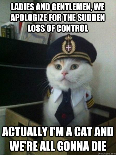 LADIES AND GENTLEMEN, WE APOLOGIZE FOR THE SUDDEN loss of control ACTUALLY I'M A CAT AND WE'RE ALL GONNA DIE - LADIES AND GENTLEMEN, WE APOLOGIZE FOR THE SUDDEN loss of control ACTUALLY I'M A CAT AND WE'RE ALL GONNA DIE  Captain kitteh