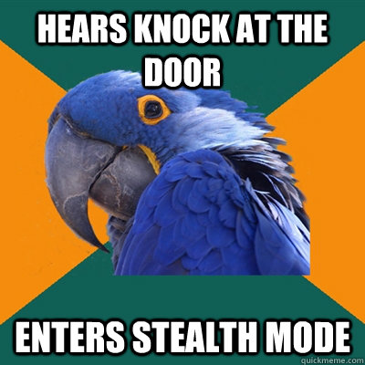 hears knock at the door enters stealth mode - hears knock at the door enters stealth mode  Paranoid Parrot